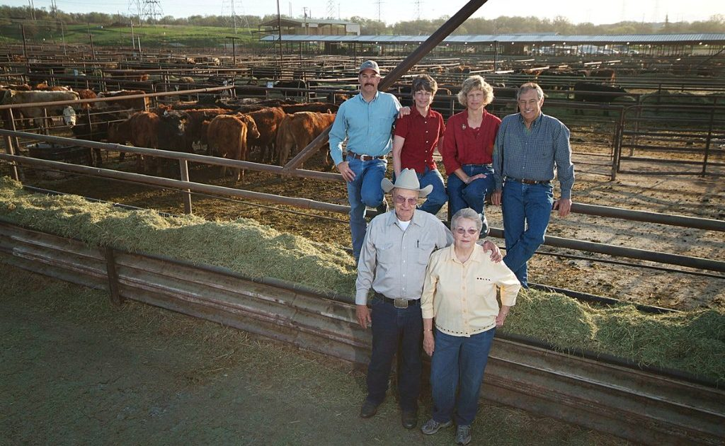 Event Spotlight – Andy Peek Cattle Auction